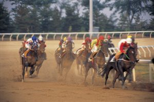 Preakness Pimlico Triple Crown Horse Racing Baltimore